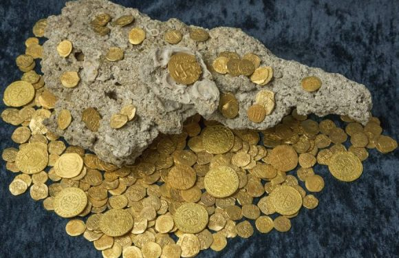 How to Make Sure If You Have Found Rare Coins?