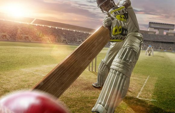 Ten fun facts that amaze every cricket lover