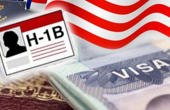 H1b Reform and University of Delaware