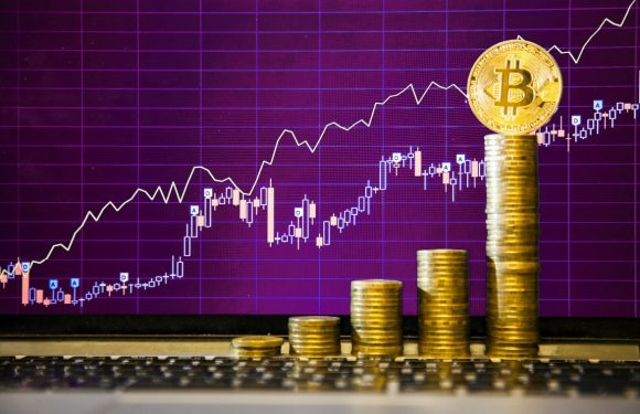 Useful Tips You Should Know to Understand How to Trade Cryptocurrencies